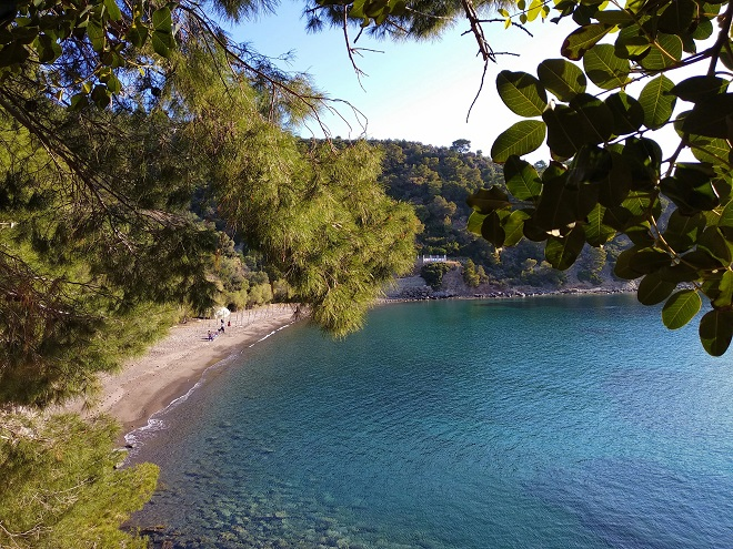 plaz methana (4)